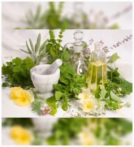 shinymen-plantes-Oméga_3-couv